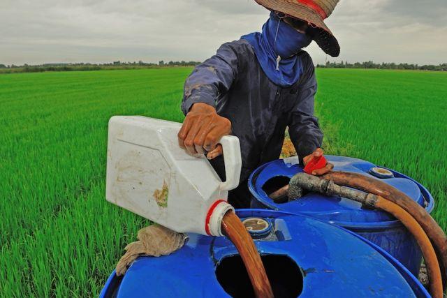pesticida-pode-ser-causa-de-microcefalia